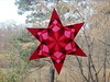 Red 6 Point Star
