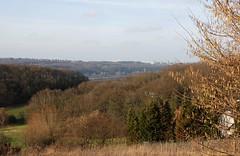 Ruhr-Uni (dididumm) Tags: trees tree sunshine germany view nrw aussicht bochum bäume ruhrgebiet baum rub witten sonnenschein lakekemnade ruhruniversitätbochum ruhruniversitybochum kemnadersee