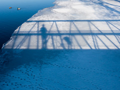 Ducks and shadows (andyscamera) Tags: bridge selfportrait ontario canada ice bicycle river shadows footprints ducks peterborough peterboroughcounty otonabeeriver andyscamera londonstbridge