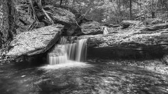 Aaron's Cascade (head on), 2012.10.18 (Aaron Glenn Campbell) Tags: statepark autumn blackandwhite bw motion blur fall nature water leaves canon eos rebel waterfall october pennsylvania sigma 18th foliage cascades slowshutter thursday hdr highdynamicrange 2012 nepa rickettsglen kitchencreek fauxinfrared luzernecounty photomatixpro tonemapping 550d colorefexpro niksoftware t2i fallstrail fairmounttownship glenleigh kissx4 aaronglenncampbell aaronscascade 1850mmdcexmacro