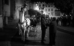 Sevilla, Andalucia, Espana (monsieur I) Tags: travel horse canon caballo cheval eos sevilla spain europa europe nightshot eu andalucia espana espagne andalousie canoneos5dmark3 monsieuri