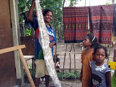 Ikat making process (behang) Tags: flores indonesia sarong ikat maumere 2013