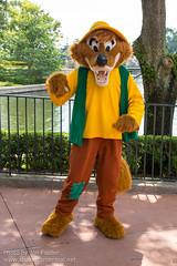 Brer Fox (Random)