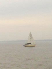 Sailboat... (jacobbible) Tags: water sailboat bay sailing florida cloudy sail fl dull pensacola pensacolabay uploaded:by=flickrmobile flickriosapp:filter=nofilter