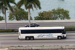 Greyhound (traveling around) Tags: greyhound bus florida miami mia fl motorcoach 6320