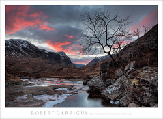 Pass of Glencoe (rgarrigus) Tags: winter sunset mountains tree nature landscape evening scotland highlands twilight rocks february singletree goldenhour lonelytree solitarytree onetree rowantree greatphotographers passofglencoe garrigus robertgarrigus robertgarrigusphotography