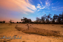 (  (khelid)) Tags: landscape nikon saudi arabia nikkor   1424 nikond600  alahsa  albednah albednah khealid