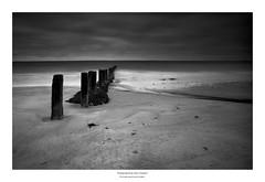 3P7A0582bw (steve pickford) Tags: golspie landscape mark3 seascape bw blackandwhite mono scotland silverefex groynes