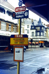 Slide 071-11 (Steve Guess) Tags: belgium belgique belgien belgi  flanders flandre flandern  nmvb sncv vicinal tram tramway streetcar strassenbahn