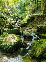 Aesbachtal IV (khn.carsten) Tags: fluss landschaft wasserfall wasser ort luxemburg deutschluxemburgischernaturpark natur stein bach fels klenglëtzebuergerschwäiz landscape luxemburgerschweiz petitesuisseluxembourgeoise river nature
