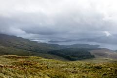 Loch Lomond (RiserDog) Tags: lochlomand rowardennan benlomond argyllandbute scotland
