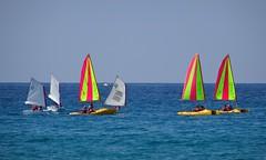 Sailing boats (Hlne_D) Tags: hlned france provencealpesctedazur provence paca var saintcyrsurmer stcyrsurmer stcyrmer leslecques mermditerrane mediterraneansea mditerrane sea mer sailingboat boat bateau voilier aviary