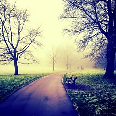 Frosty morning walk (carolinegiles1) Tags: greatoutdoors cold winter sleepyhollow eerie bench frost grass tree nature morningfog photography iphone pretty spooky misty park walk morning foggy
