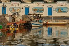 Pcheur de couleur  Bernard Grua (BernardG.) Tags: mahdia tunisie tunisia pcheurs constructionnavale bois bernardgrua