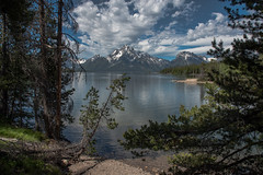 Lake View - Colter Bay - Grand Teton National Park - Wyoming - 21 June 2016 (goatlockerguns) Tags: mountain view hermitage point colter bay grand teton national park wyoming usa unitedstatesofamerica west western nature natural nationalpark lake pond forest trees tree trail