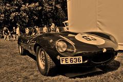 D-Type 2 (Torquemada1965) Tags: dtype jag jaguar hdr