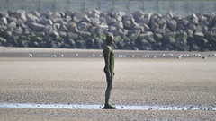 """""""Another Place"""", Crosby Beach (pda87) Tags: nikon d3200 crosby beach marina art sculpture anotherplace another place"""