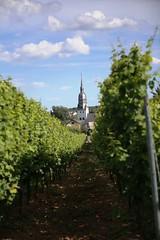 IMG_9588 (AndyMc87) Tags: weinberg canon 6d 2470 church sky clouds sunshine shadow bokeh nierstein