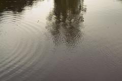eternity (Rena Rabov) Tags: eternity poem czech nature water lake