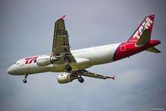 Landing (Vinicius_Ldna) Tags: 7049 airplane airport aviao aterrissagem landing plane tam brazil londrina