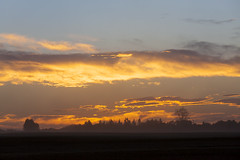 26 of 52 (September 23 to September 29, 2016) (Don Arsenault) Tags: sunset canoneos5dmarkii canonef70200mmf28lisiiusm clouds canada camrose alberta donarsenault scenery landscape sillouette