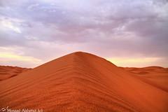 horseback sand (mosa3ad alshetwi) Tags: life tree love water sand live arab saudi  desart               sandhorsebackdesartnicegreat