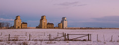 Mossleigh (cec403) Tags: old winter sky snow canada abandoned clouds rural sunrise fence dawn elevator alberta mossleigh canont4i