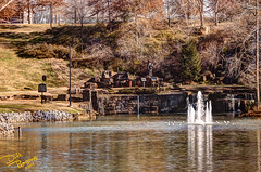 spring-park- (8 of 13) (Dave Reasons) Tags: winter alabama daytime tuscumbia springpark geocity camera:make=canon exif:make=canon exif:iso_speed=100 exif:focal_length=120mm camera:model=canoneos50d geostate geocountrys exif:lens=ef70200mmf28lisusm exif:model=canoneos50d exif:aperture=28 geo:lon=87703483333333 geo:lat=34729563888888