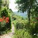 """Promenade sur les sentiers des jardins de l'Abbaye de Valsaintes • <a style=""""font-size:0.8em;"""" href=""""http://www.flickr.com/photos/90528120@N02/8390261062/"""" target=""""_blank"""">View on Flickr</a>"""