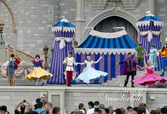 Disney World (Nancy Vanderbilt Photography) Tags: castle colorful peterpan disney disneyworld aurora cinderella waltdisneyworld wendy princes snowwhite sleepingbeauty princesses