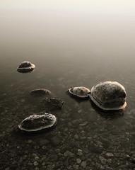 Oxn...Swedish archipelago.(Explore) (Robban.G) Tags: sunlight ice water stone nikon sweden swedish archipelago d800 swedisharchipelago