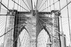 (Project.84) Tags: city newyorkcity bridge blackandwhite bw white newyork black monochrome brooklyn photography mono blackwhite architechture manhattan streetphotography uptown brooklynbridge boardwalk cocacola bigapple blackwhitephotos