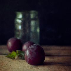 Plums (borealnz) Tags: stilllife fruit bottle purple basement jar getty arrangement plums
