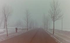 dutch winter (82) (bertknot) Tags: winter dutchwinter dewinter winterinholland winterinthenetherlands hollandsewinter winterinnederlanddutchwinter