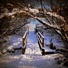 snowy bridge (perseverando) Tags: bridge winter snow shadows wonderland pictureperfect atherton tyldesley perseverando shackerley visionqualitygroup magicunicornverybest fleursetpaysages
