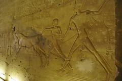 Abydos 44 (eLaReF) Tags: dynasty xix abydos osirion templeofsetii setiiseti1abdju