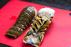 Lobster Tail (Another Pint Please...) Tags: cooking beer tail grill alcohol lobster samueladams prep hops