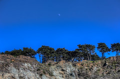 Presidio's Moon (FRESHPhotoLive) Tags: trees cliff moon landscape hdr 4exp