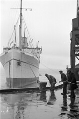 [Longshoremen tying up the