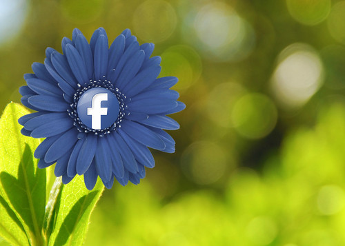 Facebook Flower by mkhmarketing, on Flickr