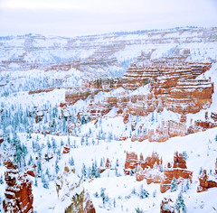 bryce canyon vertorama sunrise point after snow storm 3 9 13 (houstonryan) Tags: park county snow art print photography march utah photographer ryan hiking snowy snowstorm houston canyon hike system snowcapped national photograph covered area hoodoo bryce hatch redrock sell garfield selling hoodoos snowcovered snowed panguitch 2013 houstonryan
