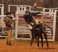 Junior Bull Riders Association, March 2013 (Garagewerks) Tags: boy male oklahoma sport all child sony bull riding rodeo 70300mm tamron bullriding f456 slta65v juniorbullridersassociation
