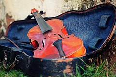 IMG_9865b - 11.09.2015 (hippo1107) Tags: violine geige musik instrument stillleben zahnderzeit antik alt canoneos650d canon eos 650d september 2015