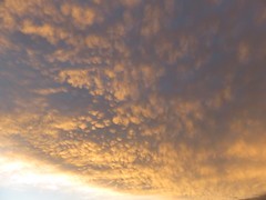 Sheepskin-like Cloud Formation! (RS 1990) Tags: sunset interesting weather cloud formation adelaide southaustralia tuesday 30th august 2016