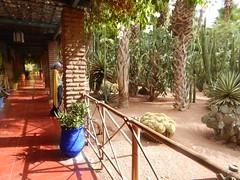 DSCN2622 (dbohaty) Tags: jardin majorelle morocco almaghrib