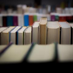 Bcher, books (fritz polesny) Tags: bcher books canoneos6d quadrat flohmarkt