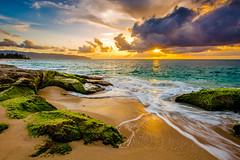 A beautiful Hawaiian Sunset (lisame0511) Tags: ocean sea hawaii beach haleiwa aloha rocks cloud sand sun wave sky oahu shorebreak hawaiian hawaiiansunset sunset unitedstatesofamerica