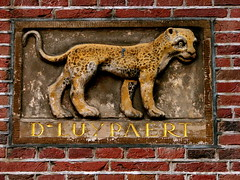 out of its habitat (Szymek S.) Tags: animal leopard sculpture relief plaque wall city amsterdam holland netherlands nederland