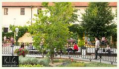 Prague, franciscan gardens: loved by the locals | 2015-07 (Brigitte Rieser) Tags: prag praha prague garden zahrada franziskanergarten frantiskanskazahrada franciscangardens jardin park parc praha|prague|prag novemesto tschechienczechia oeffentlich tschechien public