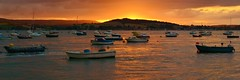 Exe Estuary at Sunset (Paula J James) Tags: sunset sunsets exeestuary exmouth devon england 2016 august august2016 rivers river boats